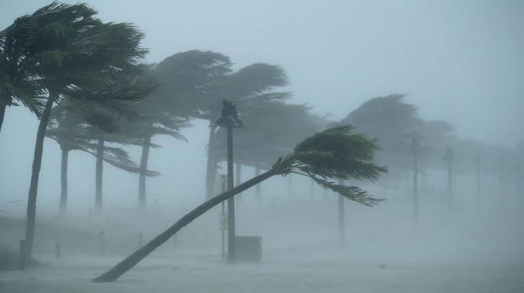 There are different types of winds, and the damaging winds are commonly referred to as straight-line winds. This is aimed at differentiating the type of damages that they cause, from that caused by tornadoes. Bellwether Restorationsoffers exceptional services to the people who have been affected by damaging winds. There are several processes that cause the strong winds that cause damage to property. Any wind that is blowing at a speed that exceeds 50-60mph is classified as damaging wind.The main objective of Bellwether Restorationsis to rebuild any property that has been damaged by the winds and restore the clients' lives to normalcy.